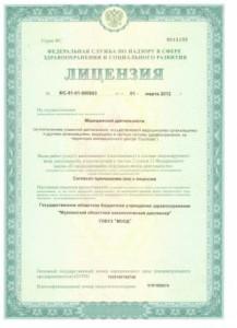 Лицензия на деятельность стр. 1